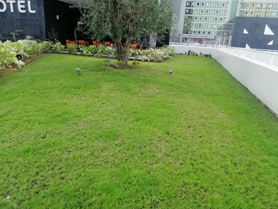Landscaping (10)