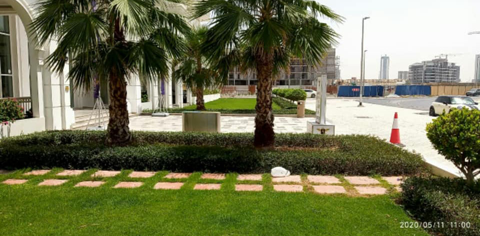 Landscaping (14)
